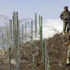 In this picture taken on 4 December 2003, Indian soldiers patrol along a barbed-wire fence near Baras Post on the Line of Control (LoC) between Pakistan and India some 174 kms north west of Srinagar.