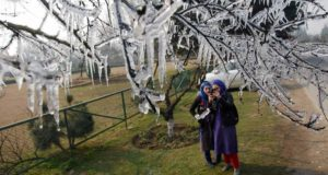 Srinagar: Girl students click pictures of the icicles hanging from branches of trees on the first day of Chillai-Kalan (The 40-day period of harshest winter in Kashmir ), at Kashmir University Campus in Srinagar on Monday. PTI Photo(PTI12_21_2015_000212B)