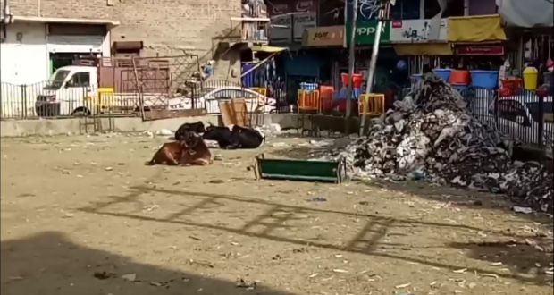 public park turned into Garbage Dumping Site